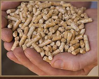 Now Selling Wood Pellets